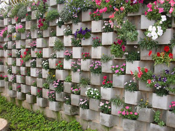 decorar jardim jogos:Parede de sala revestida de várias plantas verdes.