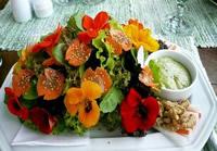refeição feita de flores